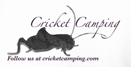 Cricket Camping With Kids